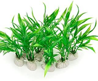 گیاه تزئینی زیستگاه لاک پشت مدل گرین