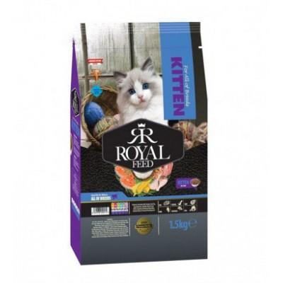 غذای خشک بچه گربه رویال فید royal feed kitten dry food