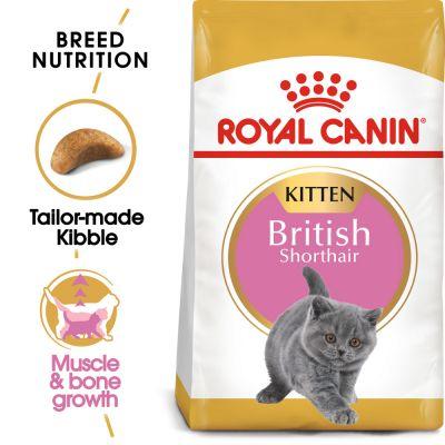 غذای خشک بچه گربه بریتیش برند رویال کنین 2 کیلویی