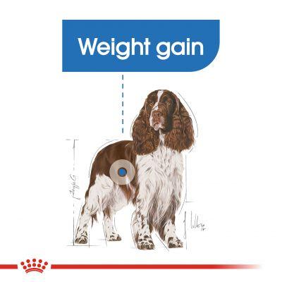 غذای خشک سگ Medium Light Weight Care رویال کنین