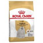 غذای خشک مناسب سگ بالغ نژاد مالتیز برند رویال کنین