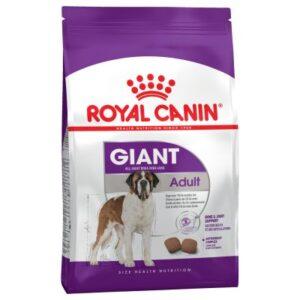 غذای خشک سگ بالغ نژاد بزرگ