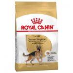 غذای خشک مناسب سگ بالغ ژرمن شپرد برند رویال کنین