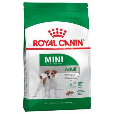 غذای خشک سگ متوسط