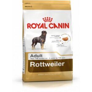 غذای خشک سگ رتوایلر