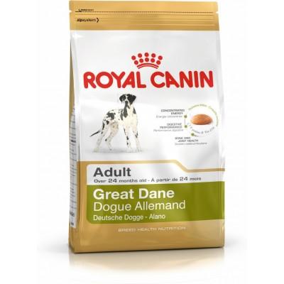 غذای خشک سگ نژاد گریت دین بالای 24 ماه