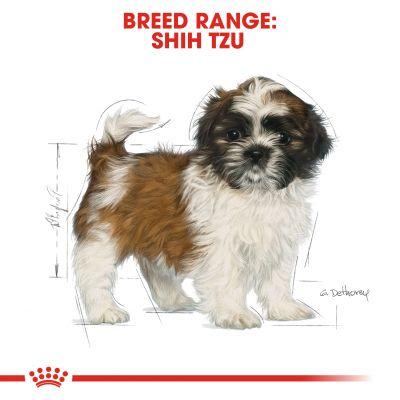 غذای خشک توله سگ (پاپی) شیتزو برند رویال کنین وزن 1.5 کیلوگرم