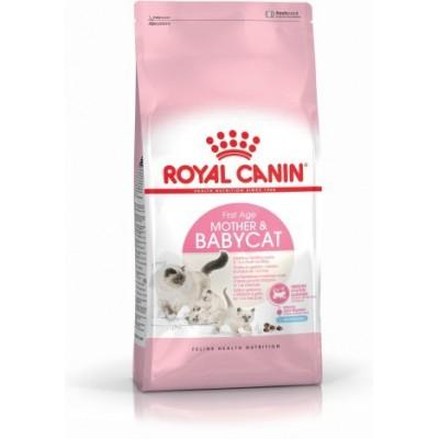 خشک مادر و بچه گربه رویال کنین royal canin mother and baby cat dry food