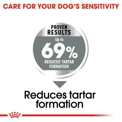 غذای خشک مناسب مراقبت از دندان سگ برند رویال کنین