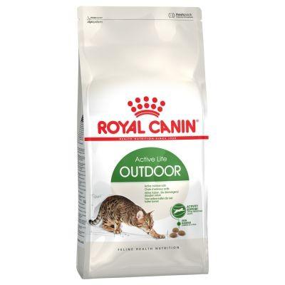 غذای خشک گربه بالغ خارج خانه برند رویال کنین royal canin active life outdoor cat dry food