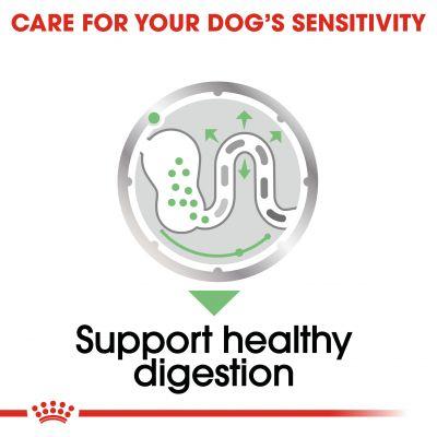 غذای پوچ مناسب مراقبت از هضم سگ برند رویال کنین