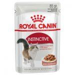 پوچ مناسب گربه بالغ بالای 12 ماه برند رویال کنین