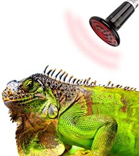 لامپ گرمایشی مناسب خزندگان