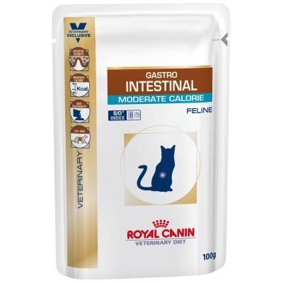 پوچ گربه مبتلا به بیماریهای گوارشی با کالری متوسط