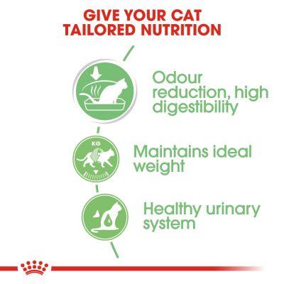 پوچ گربه مناسب مراقبت از هضم برند رویال کنین