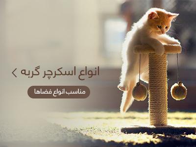 خرید اسکرچر گربه