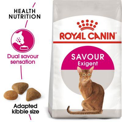 غذای خشک گربه بد اشتها حساس به طعم غذا رویال کنین