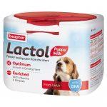 شیر خشک توله سگ لاکتول برند بیفار