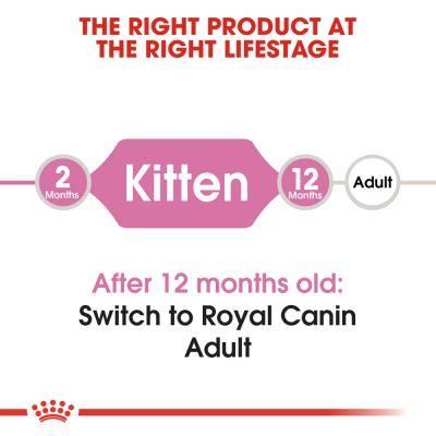 غذای خشک بچه گربه برند رویال کنین 2 کیلوگرمی