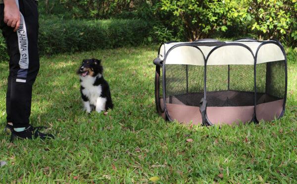 پارک سگ برزنتی 8 ضلعی سایز بزرگ کیفیت A++ با کفی باز شو