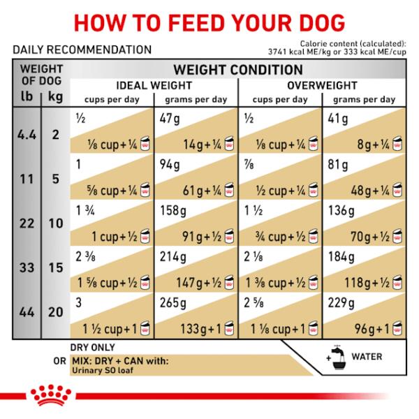 غذای خشک درمانی سگ Urinary S/O یورینری رویال کنین وزن 2 کیلوگرم