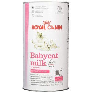 شیر خشک گربه رویال کنین + شیشه شیر + سری یدک