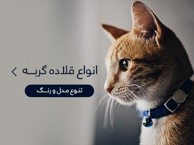 خرید قلاده گربه