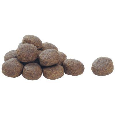 غذای خشک مناسب سگ بالغ نژاد بزرگ با طعم مرغ برند پروپلن 14 کیلوگرمی