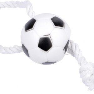 توپ بازی فوتبال با کناف مناسب سگ