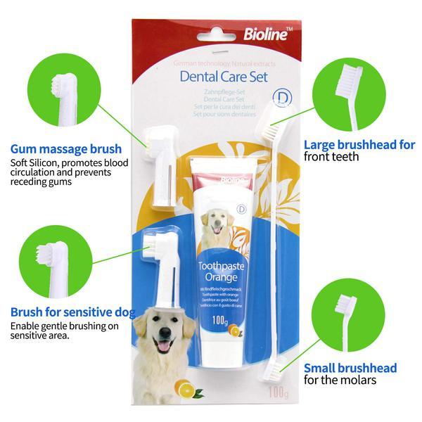 ست مسواک و خمیر دندان پرتقالی مناسب سگ برند بیولاین