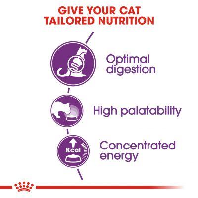 غذای خشک مناسب گربه با دستگاه گوارش حساس برند رویال کنین