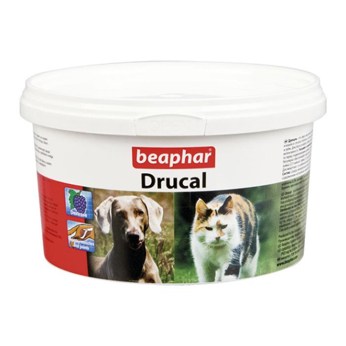 beaphar durcal cat dog