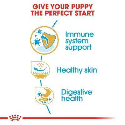 غذای خشک مناسب توله سگ نژاد پاگ برند رویال کنین 1.5 کیلوگرمی