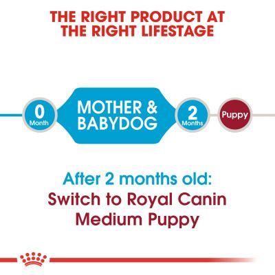 غذای خشک مدیوم استارتر مادر و توله سگ برند رویال کنین 1 کیلوگرمی